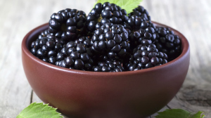 Blackberries_STACK