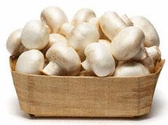 blog-mushroom.jpg